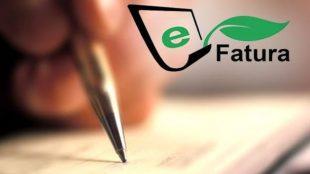 E-Devlet Çözümleri